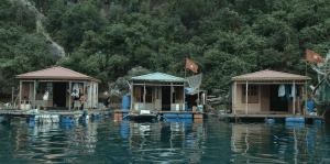 "Standbild aus dem Dokumentarfilm ""Farewell Halong"""